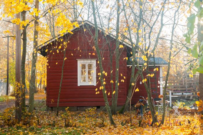 Fritidshus med höstgula träd utanför